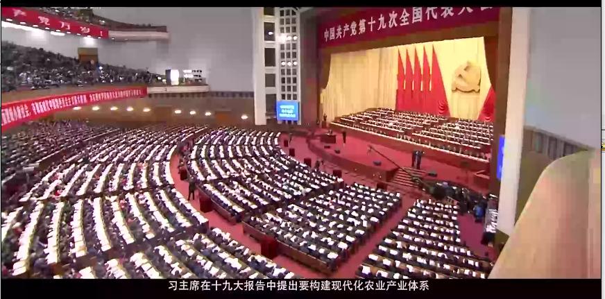 广东绿然灯塔宣传视频